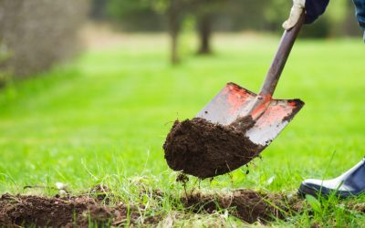 Local Natural Gas Utilities' Essential Services Remain a Priority During Spring Digging Season to Prevent Damage to Underground Utilities
